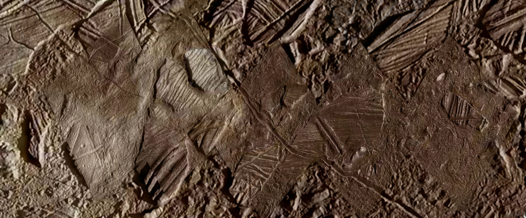 Image of terrain on Europa